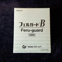 フェルガードB-min